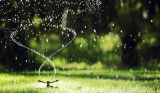 Water-Smart Lawn Care